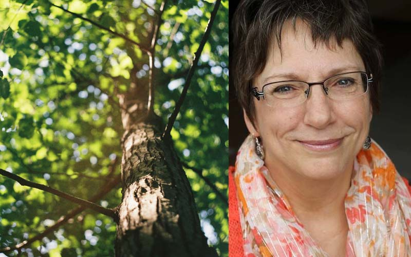 Judy Huxmann