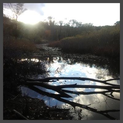 Kleinstuck Nature Preserve