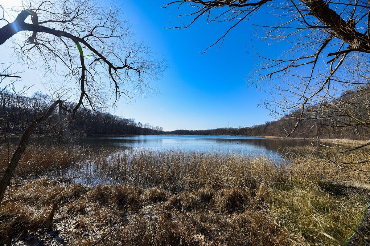 Asylum Lake Preserve